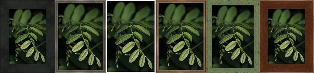 Ukázka některých druhů rámů pro fotoobrazy.